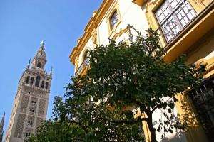 Plaza Virgen de los Reyes durante la temporada de primavera en Sevilla.
