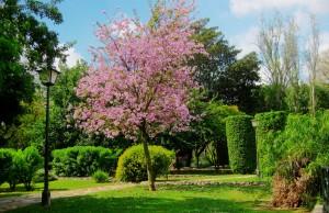 Parques en Sevilla