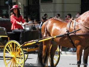 paseeo en coches de caballo