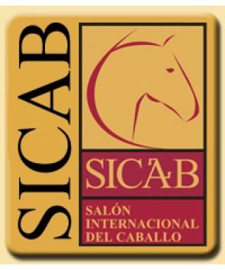 Logo SICAB