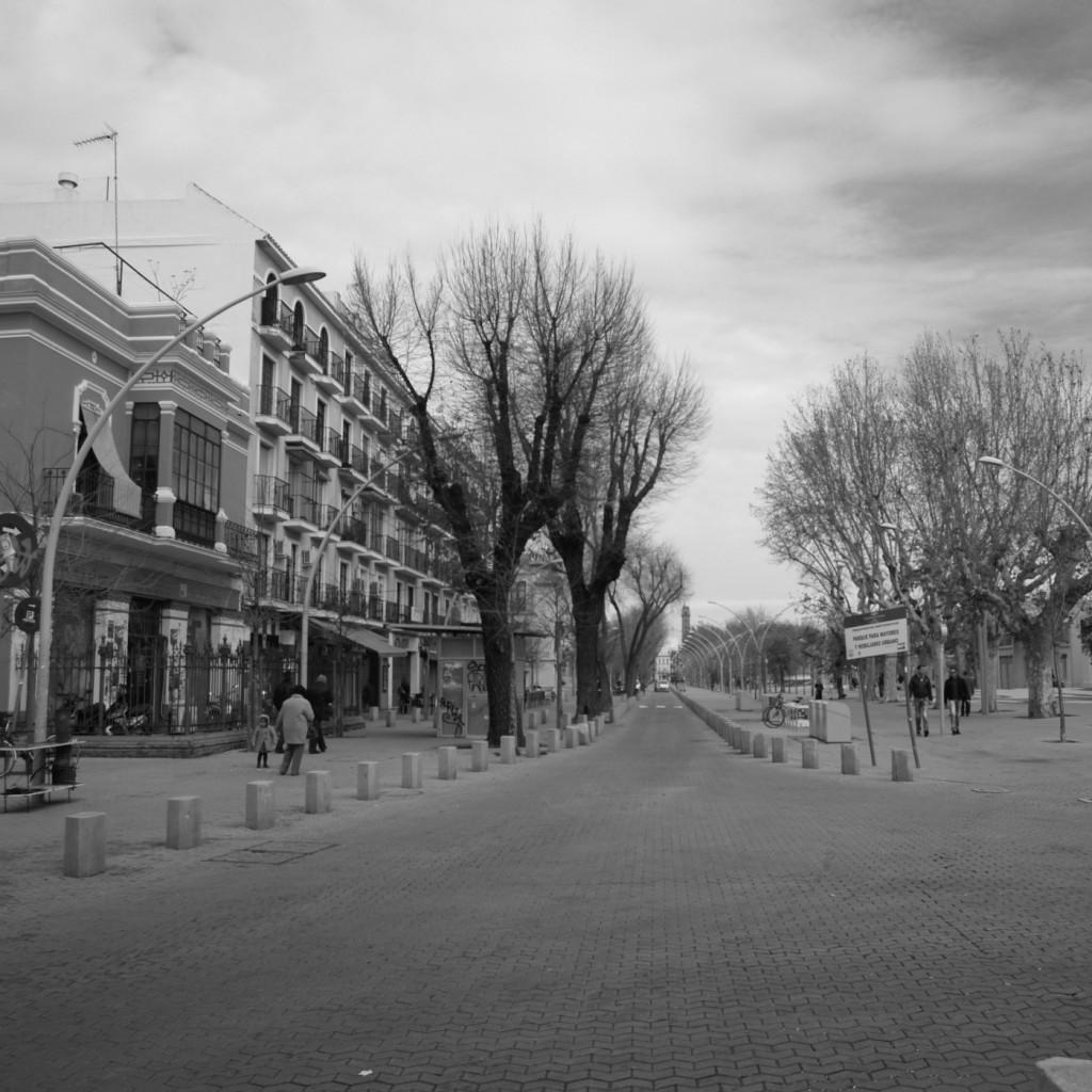 Invierno en Sevilla