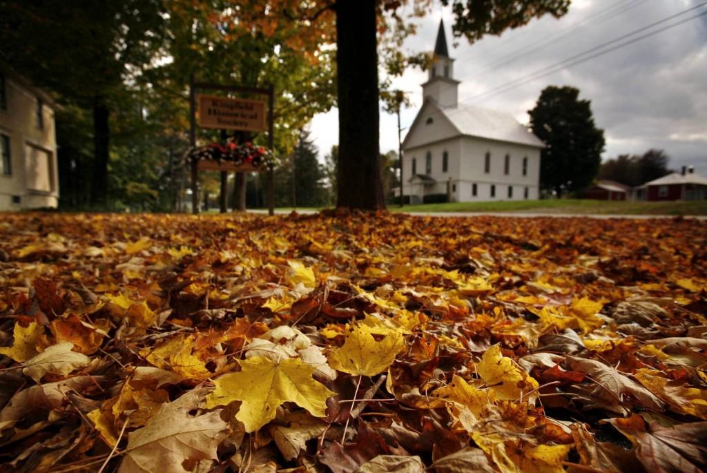 otoño en sevilla.jpg-