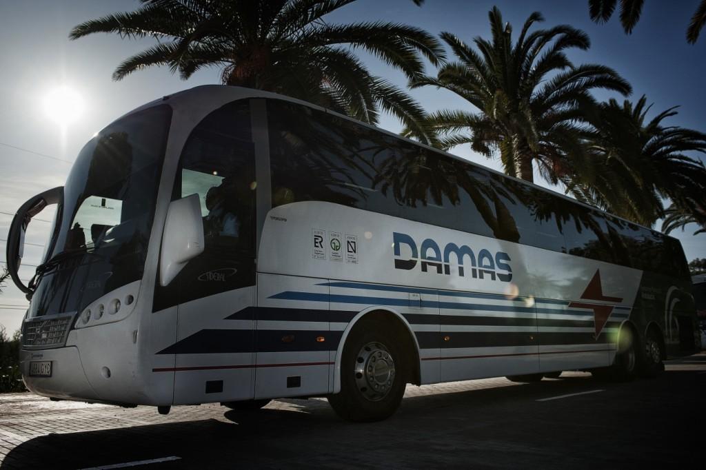 damas-s.a